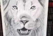 Création dessin / Lion
