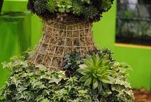 rochii din plante