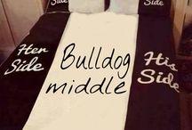Bulldog humor