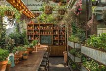 Drivhus gartner planter
