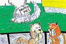 Spay / Neuter
