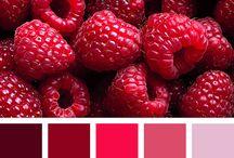 Barvy barvičky