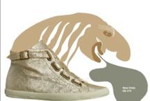 shoes & cia