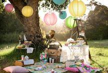 Summer Picnic / summer picnic for a small wedding