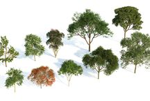 Clipart: trees & plants