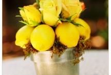 Dekoracje stolow: owoce