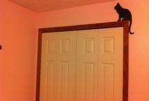 Door topper