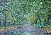 Художник Олег Буйко / Художник Буйко Олег Брониславович родился в 1968 году, в городе Полоцке, Белоруссия.