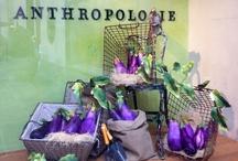 Anthropolgie