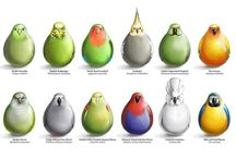 FF_birds