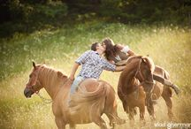 horsey love  / by Rachael Bracken