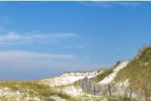 Life On A Florida Beach / Laid back.  Enjoying God's creation.