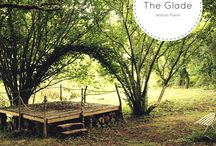 Camping - Wilton Farm - The Glade / Beautiful photos of the Glade at Wilton Farm