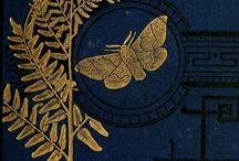 Fancy Book Binding / by BHL