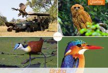 Travel to Botswana / Explore Okavango Delta & Makgadikgadi Pans