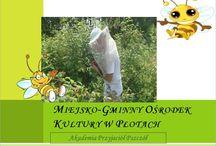 MOK Płoty Akademie Przyjaciół Pszczół