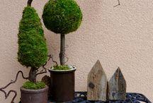 Bäume aus Moos