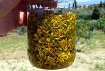 The Cookbook: Herbs & Homemade Medicines