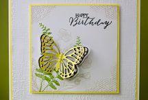 SU Butterfly Basics
