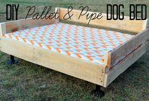 Dog beds / Pets