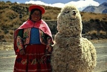 Travel - Peru / Our family are missionaries in this part of the world and they love the people, customs and lifestyle in Peru / by connie johnson