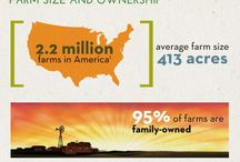 DYK?! / Did You Know....? Learn more about agriculture, farming, and the fair!