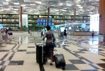 Aeropuerto Singapur Changi / Interiores del aeropuerto internacional de Singapur.