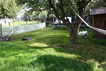 Mis fotos / Paisajes y comidas típicas de mi región. Nuestro patio y huerta. Platos preparados por mi o Sergio...  Ya algunas imágenes de viajes.