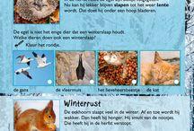 thema winter groep 3 eerste leerjaar