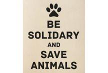 Save Animal Slogans