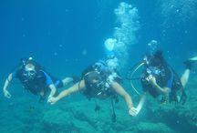 Syros Scuba Diving