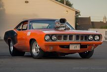 muscle cars / a collection of American muscle cars
