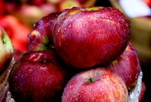Obsessed with apples / Being cider producers, we have been obsessed with apples  since 1728!