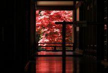 Scenery/Japan