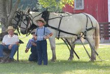 all things amish / by Kathy Wassink