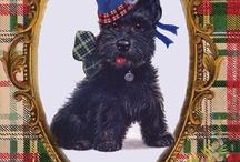Scotland! Oh Scotland! / by Libby Cook