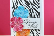 animal print cards