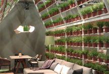 Cafe plant pots
