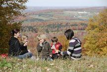 Automne / Fall / Saluez les couleurs avec nous!  Come celebrate the splendour of autumn with us! / by Centre-du-Québec