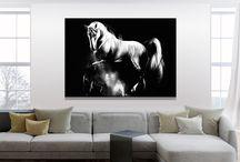 Konie / Horses / Nowoczesne obrazy do salonu. Unique paintings. Unikatowe zdobienia obrazów do sypialni i jadalni.