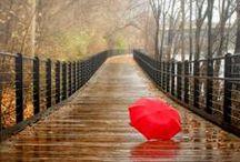 Esős nap