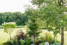 Oval garden beds