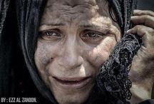 Gaza / Az emberi jogokról!!!   Human Rights!!! Itt: http://www.un.org/en/documents/udhr/index.shtml