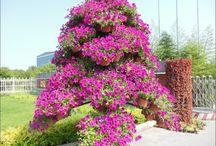květinové  balkony