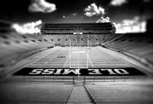 House Divide / I'm Ole Miss and the Boy is State. Enough said :)  Hotty Toddy! / by Melissa Denson