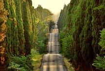 cesty a cestičky