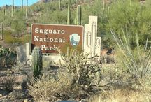Arizona Federal Lands and Waterways / The White House has officially launched free entrances to all federal lands and waterways for all 4th graders and their families for a full year! Get out there and explore!!