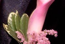 Bruidsbloemen inspiratie: corsages (repins)