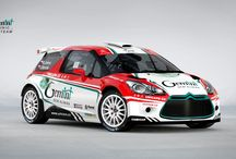 Gemini Clinic Rally Team (Citroen DS3 R5, truck) / Design and wrap.