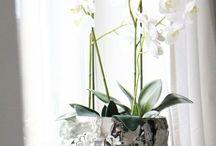 Wohnzimmer Silber Weiß